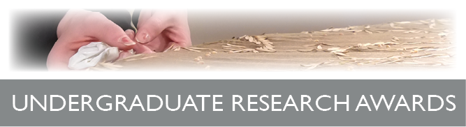 Undergraduate Research Awards